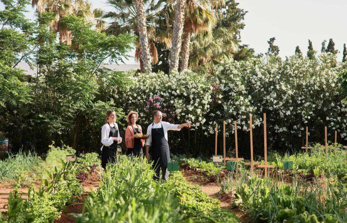 Cretan Malia Park – Garden Overview