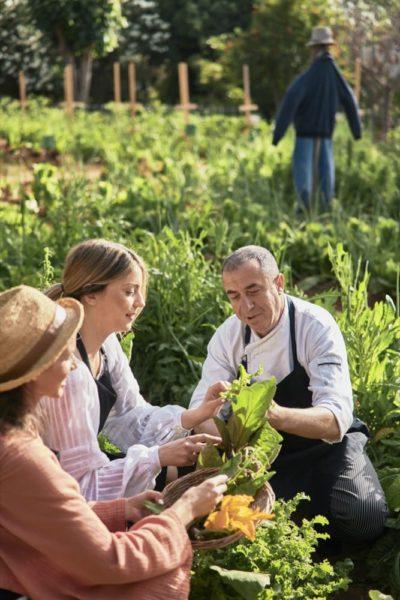 Malia Organic Garden Malia Organic Garden 3225