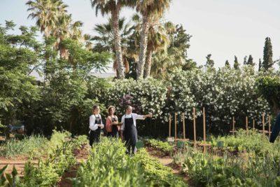Malia_Organic_Garden-Malia_Organic_Garden-3245-1
