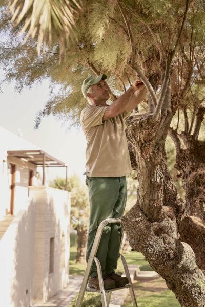 Cretan Malia Park – Gardener (2)