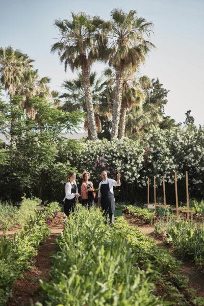 Cretan Malia Park – Taste (72)