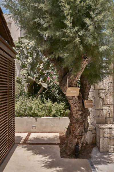Cretan Malia Park – Wellness (8)