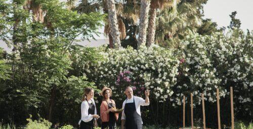344 – Organic Kitchen Garden