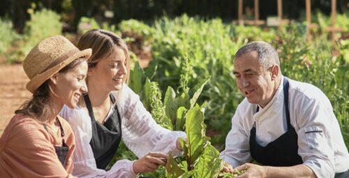 348 – Organic Kitchen Garden