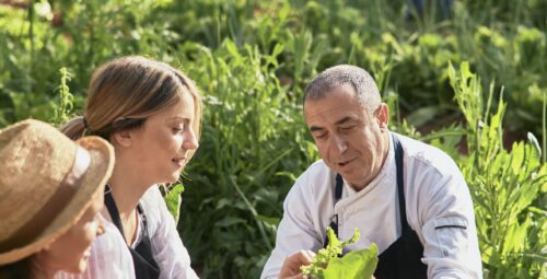 349 – Organic Kitchen Garden
